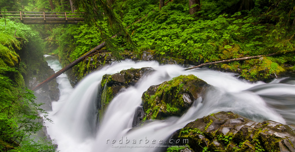 Barbee_110714_3_7782   Sol Duc Falls, Olympic National Park, WA