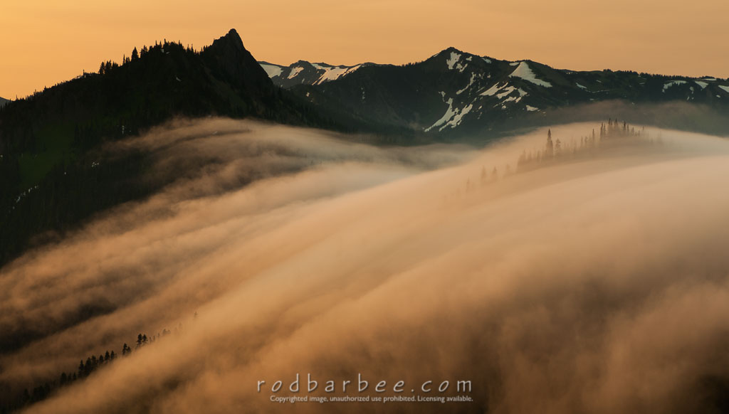 Barbee_120727_3_7038 | Fogscape from Hurricane Ridge Road