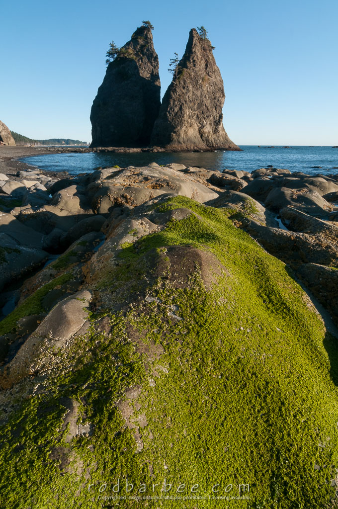 Barbee_140726_3_6309 | Seastacks on Rialto Beach, Olympic National Park, WA